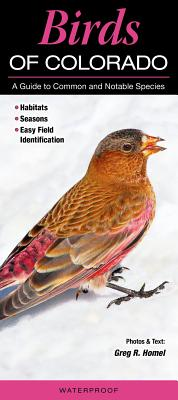 Birds of Colorado: A Guide to Common and Notable Species Cover Image
