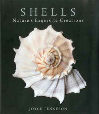 Shells: Nature's Exquisite Creations Cover Image