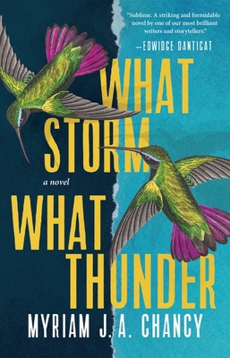 Cover Image for What Storm, What Thunder