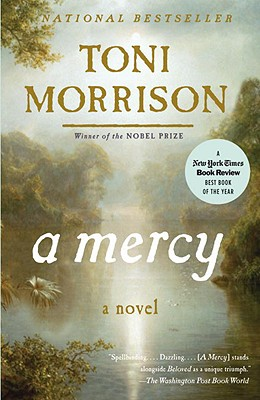 A Mercy (Vintage International) Cover Image