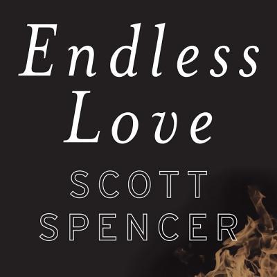 Endless Love Lib/E Cover Image
