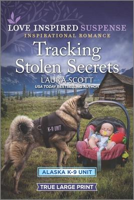 Cover for Tracking Stolen Secrets