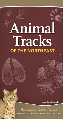Animal Tracks of the Northeast: Your Way to Easily Identify Animal Tracks (Adventure Quick Guides) Cover Image