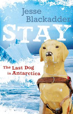Stay: The Last Dog in Antarctica Cover Image