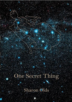 One Secret Thing Cover