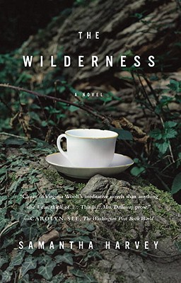The Wilderness Cover