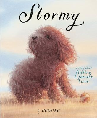 Stormy: A Story About Finding a Forever Home Cover Image