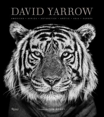 David Yarrow Photography: Americas Africa Antarctica Arctic Asia Europe Cover Image