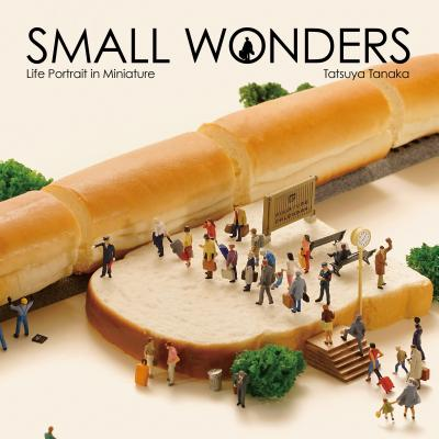 Small Wonders - Life Portrait in Miniature Cover Image