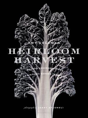 Heirloom Harvest: Modern Daguerreotypes of Historic Garden Treasures Cover Image