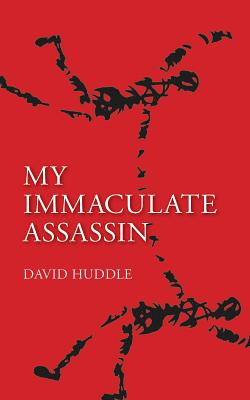 My Immaculate Assassin Cover Image
