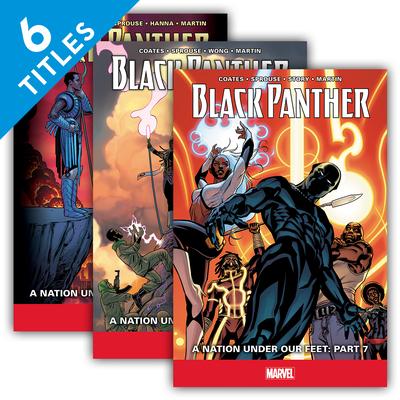 Black Panther Set 2 (Set) Cover Image