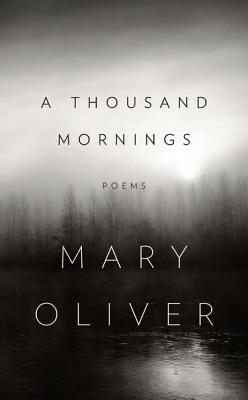 A Thousand Mornings Cover Image