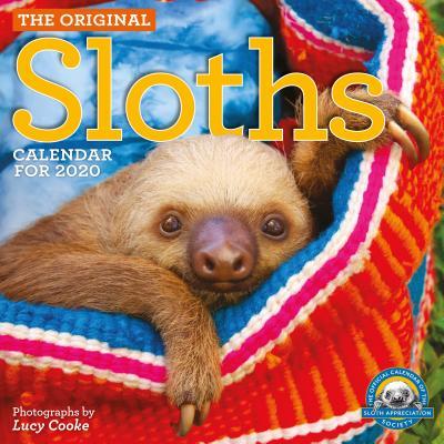 Original Sloths Wall Calendar 2020 Cover Image