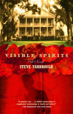 Visible Spirits Cover