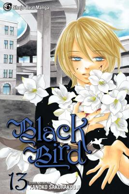 Black Bird, Volume 13 Cover