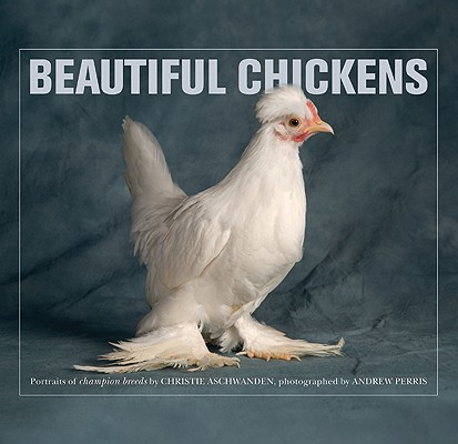 Beautiful Chickens Cover