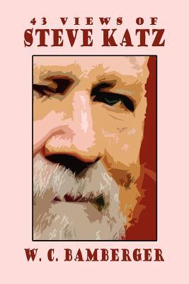Cover for 43 Views of Steve Katz