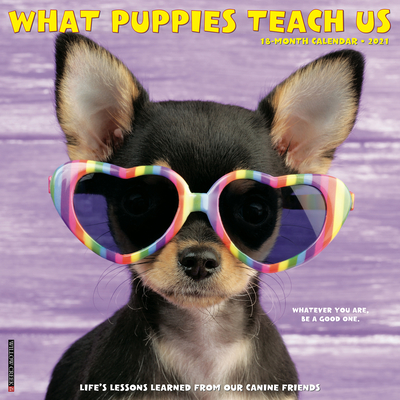 What Puppies Teach Us 2021 Wall Calendar Cover Image