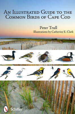 An Illustrated Guide to the Common Birds of Cape Cod Cover Image