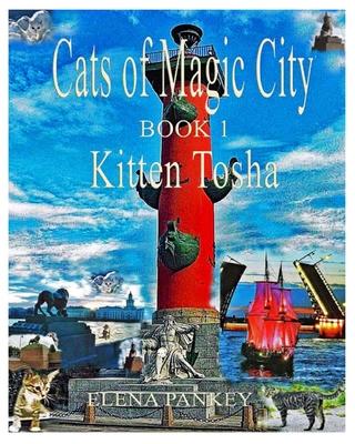 Cats of Magic City: Book 1. Kitten Tosha Cover Image
