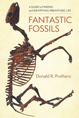 Fantastic Fossils: A Guide to Finding and Identifying Prehistoric Life Cover Image