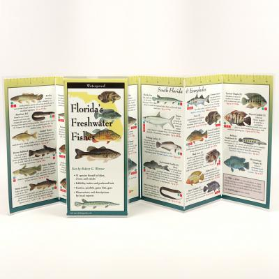 Florida's Freshwater Fishes Cover Image