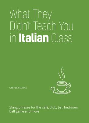 What They Didn't Teach You in Italian Class: Slang Phrases for the Cafe, Club, Bar, Bedroom, Ball Game and More (Dirty Everyday Slang) Cover Image