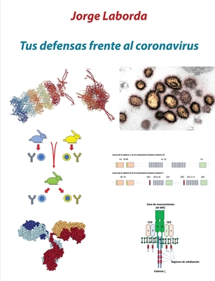 Tus defensas frente al coronavirus: Una breve introducción al sistema inmunitario Cover Image