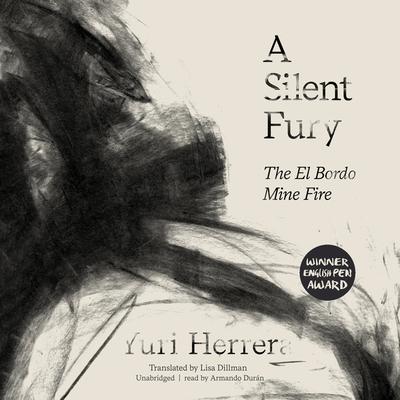 A Silent Fury: The El Bordo Mine Fire cover