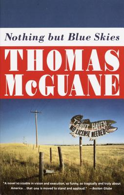 Nothing But Blue Skies Cover Image