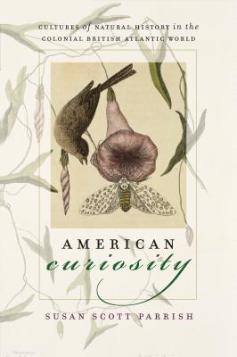 American Curiosity Cover