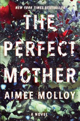 Perfect Mother cover image