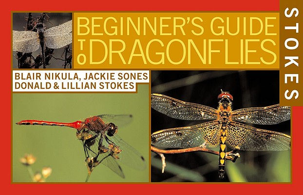 Stokes Beginner's Guide to Dragonflies Cover Image