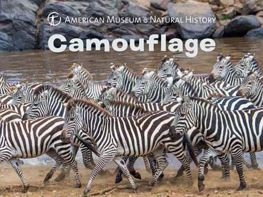 Camouflage (Science for Toddlers) Cover Image