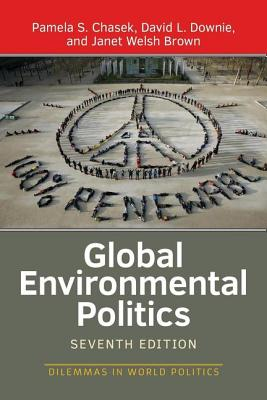 Global Environmental Politics (Dilemmas in World Politics) Cover Image