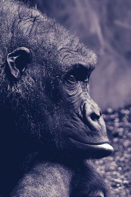 Gorilla Notebook Cover Image