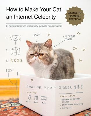 How to Make Your Cat an Internet Celebrity Cover