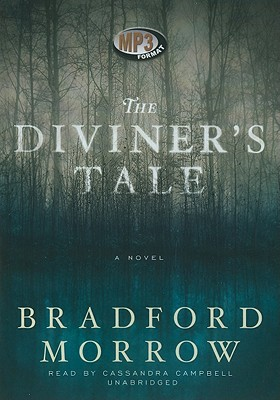 The Diviner's Tale Cover