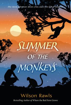 Summer of the Monkeys Cover