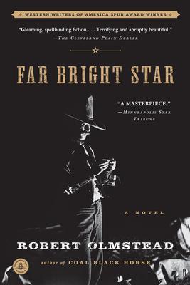 Cover Image for Far Bright Star