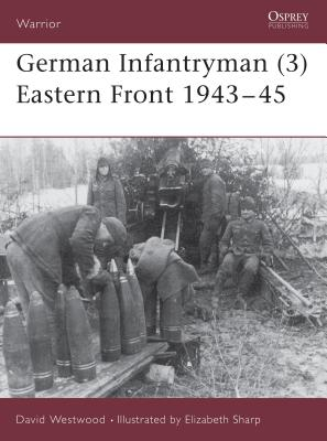 German Infantryman (3) Eastern Front 1943-45 Cover
