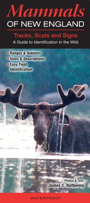 Mammals of the New England Tracks, Scats and Signs: A Guide to Identification in the Wild Cover Image