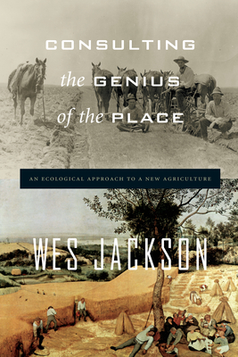 Cover for Consulting the Genius of the Place