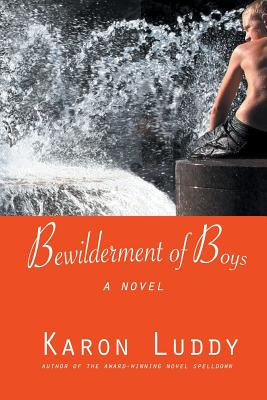 Bewilderment of Boys Cover Image
