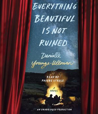 Everything Beautiful is Not Ruined Cover Image