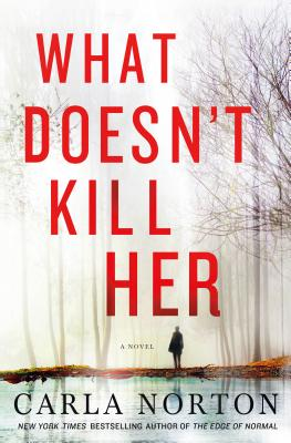 What Doesn't Kill Her: A Novel (Reeve LeClaire Series #2) Cover Image