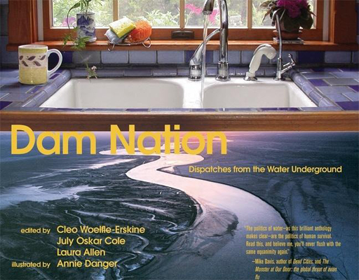 Cover for Dam Nation
