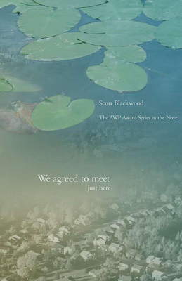 Cover for We Agreed to Meet Just Here