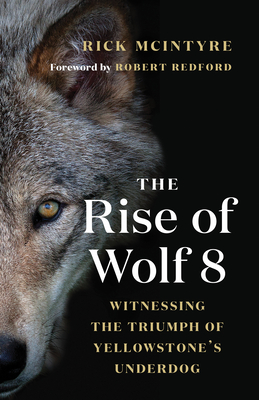 The Rise of Wolf 8: Witnessing the Triumph of Yellowstone's Underdog Cover Image